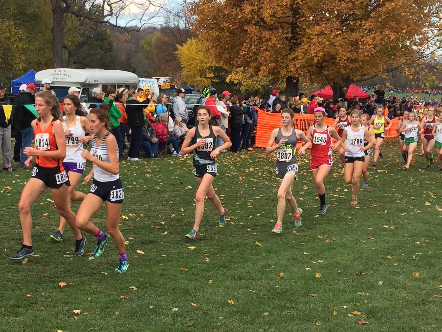 michigan state cross country meet 2015 results